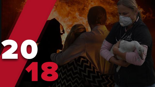 Стихийные бедствия, потрясшие мир в 2018 году: сокрушительные пожары, землетрясения, наводнения