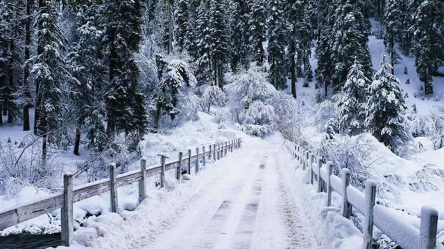 В Карпатах выпало больше метра снега: сказочные фото и видео