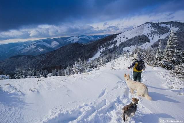 Заблудившиеся в горах на Львовщине: появилась информация о состоянии спасенного туриста