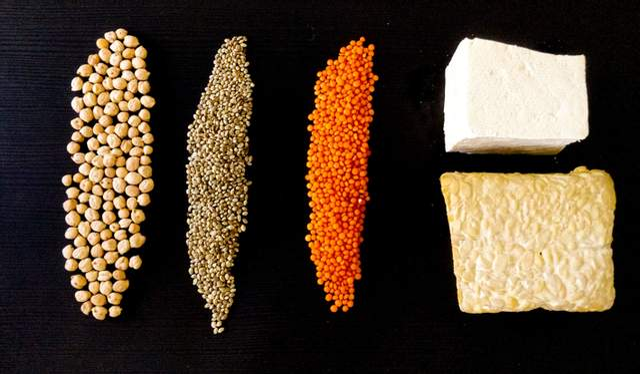 В чем польза и вред протеина