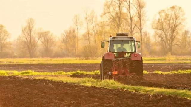В Минэкономики озвучили цену гектара после введения рынка земли