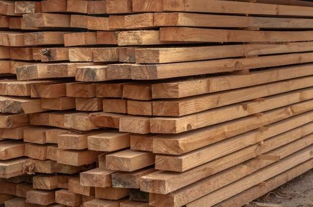 Украинскую древесину будут продавать на онлайн-аукционах: что это означает и когда стартует