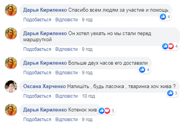 Київ маршрутка кошеня