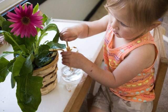 Дитина поливає рослину