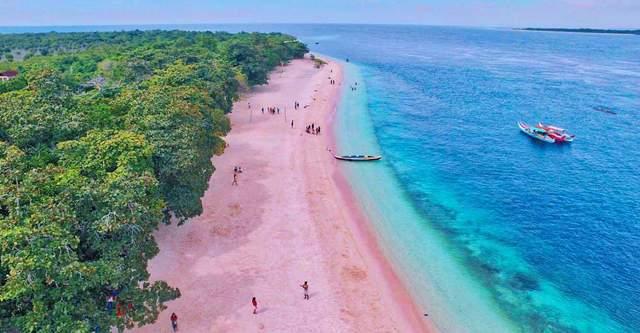 Рожевий піщаний пляж на острові Порт
