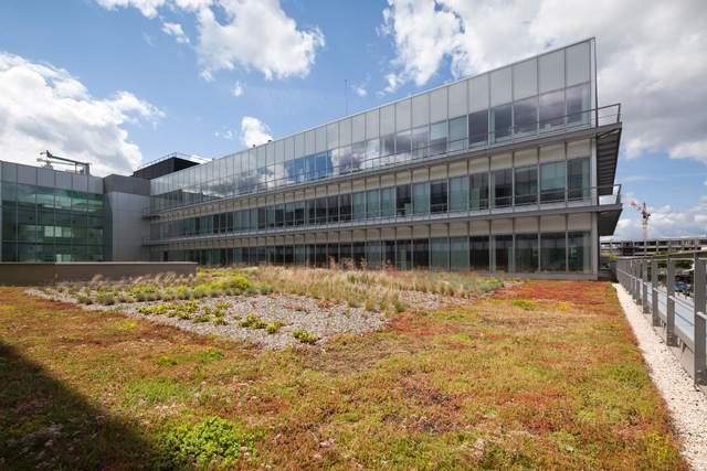 Производитель строительных материалов показывает преимущества экологических крыш для домов