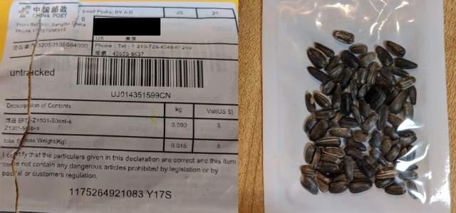 Загадкове насіння у США