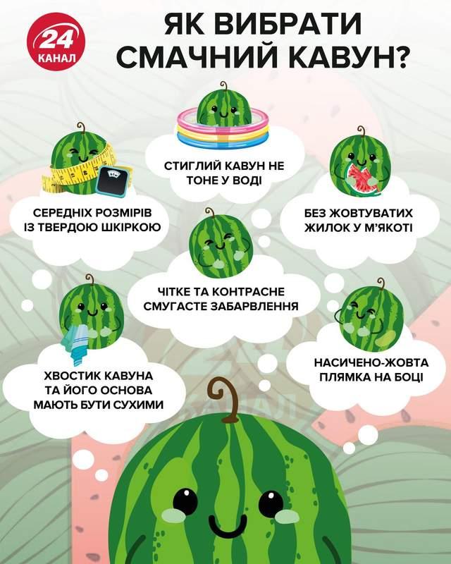 Як вибрати смачний кавун інфографіка 24 каналу