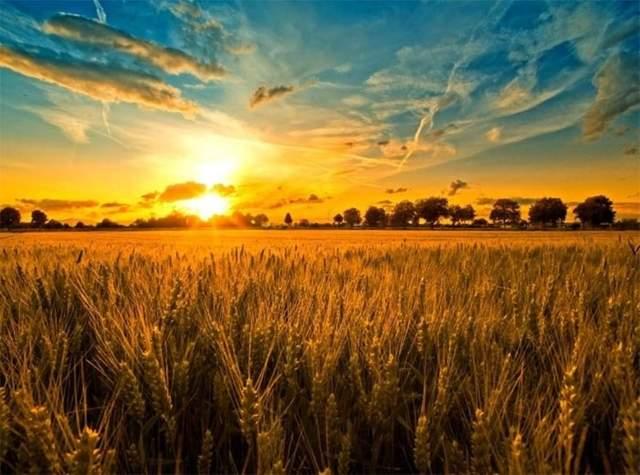 24 серпня – яке сьогодні свято та що не можна робити в цей день