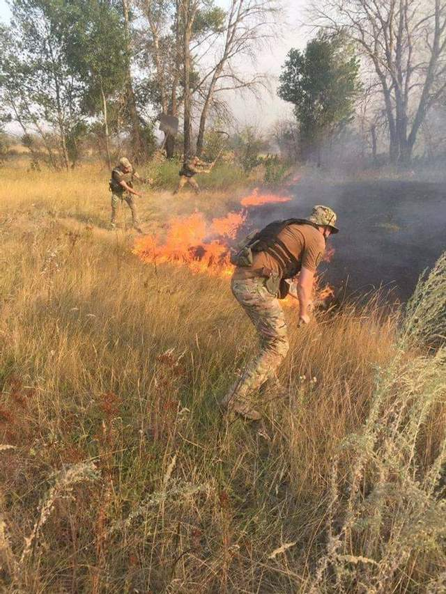 Масштабные пожары в Луганской области: в двух районах все еще продолжается тушение огня