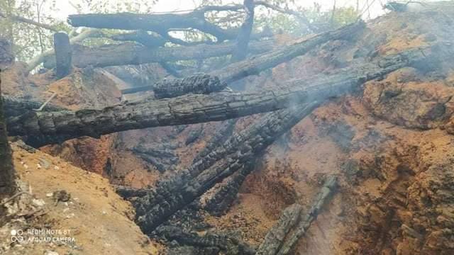 На Донбасі згоріло 6 позийцій ЗСУ