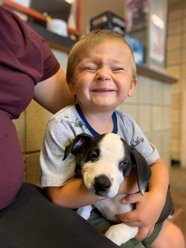 Хлопчик отримав від батьків собаку, який має такий же діагноз