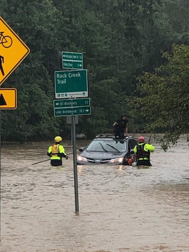 зливив Вашингтоні