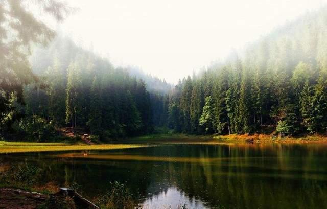 карпатський найіональний парк