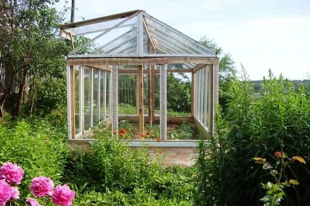 Для бюджетної теплиці достатньо мати старі віконні рами