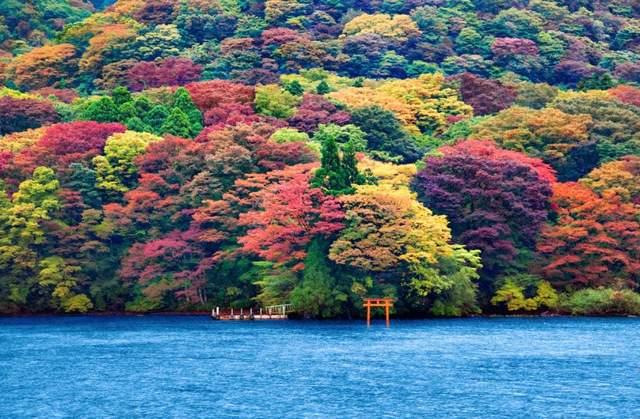 Осень в разных уголках мира (ФОТО) 15