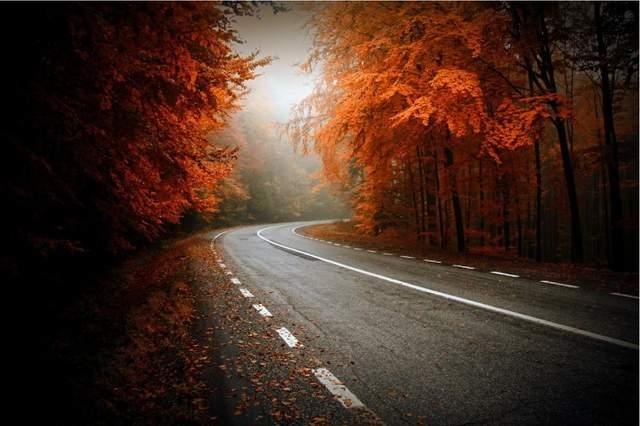 Осень в разных уголках мира (ФОТО) 11