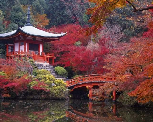 Осень в разных уголках мира (ФОТО) 3