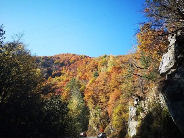 Осень в разных уголках мира (ФОТО) 7