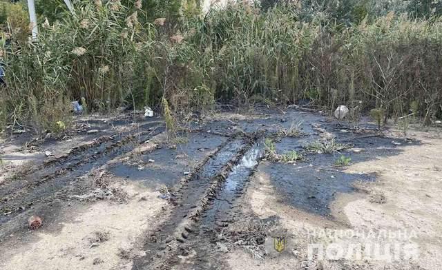 Забруднене поле