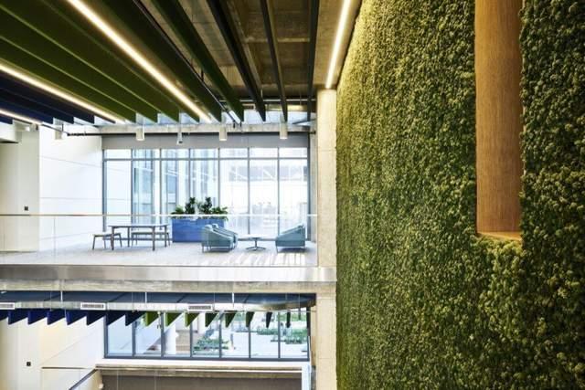 В интерьере использовали вертикальное озеленение
