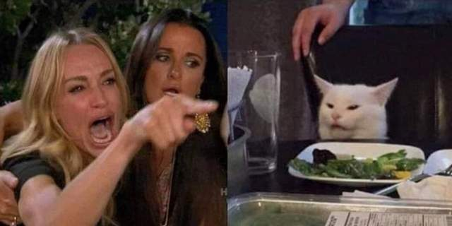 Мем, кіт