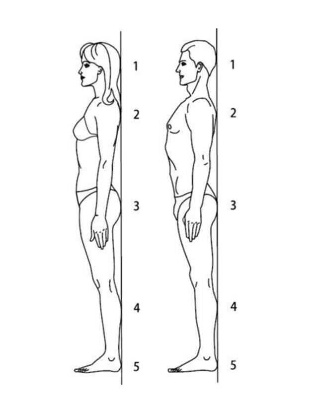 Простой способ выровнять спину