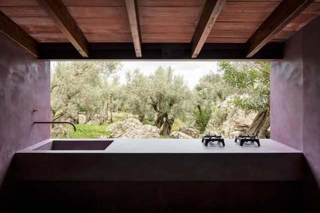Кухня с видом на старые оливковые деревья
