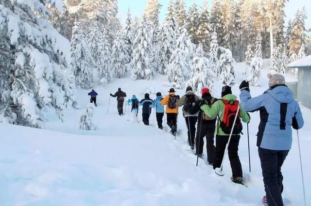 Скандинавська ходьба є хорошою альтернативою бігу взимку