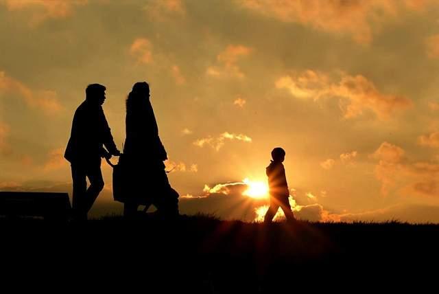 Прогуляйтеся із рідними / Фото Pixabay