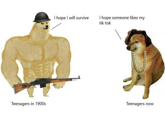 мем Swole Doge vs. Cheems