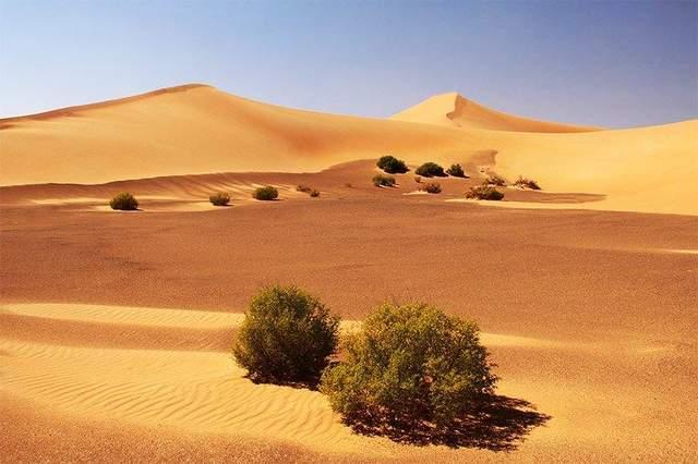 руб-ель-халі пустеля