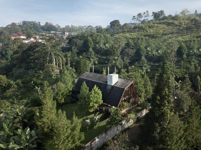 Густий ліс дає прихисток дому / Фото Archdaily
