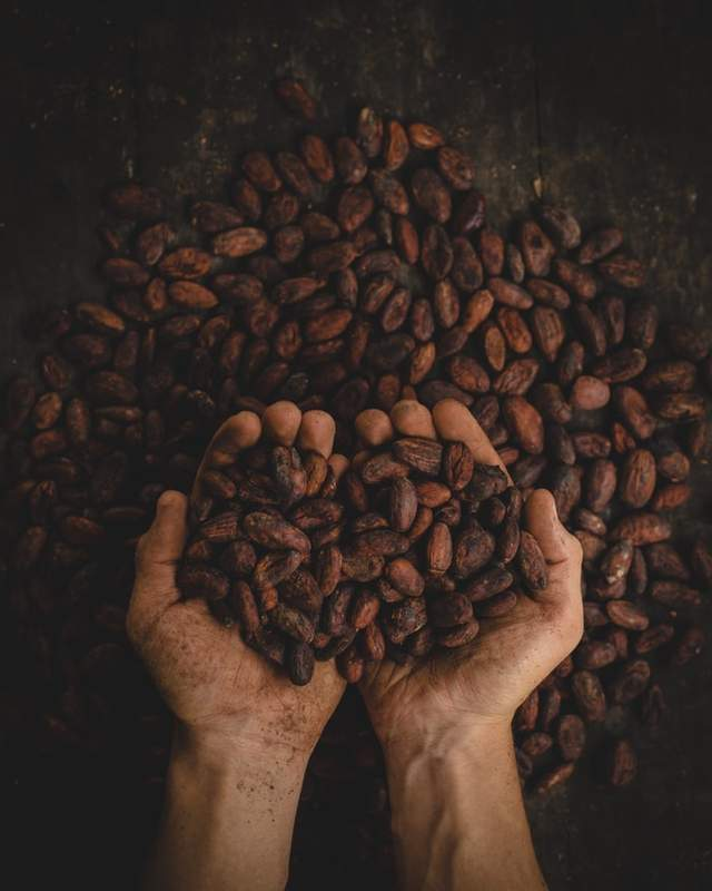 Смажена кава зменшує ризик хвороби Альцгеймера