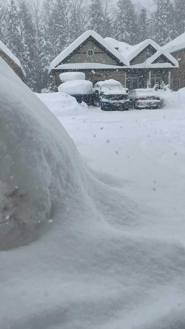 сніг канада 23 січня