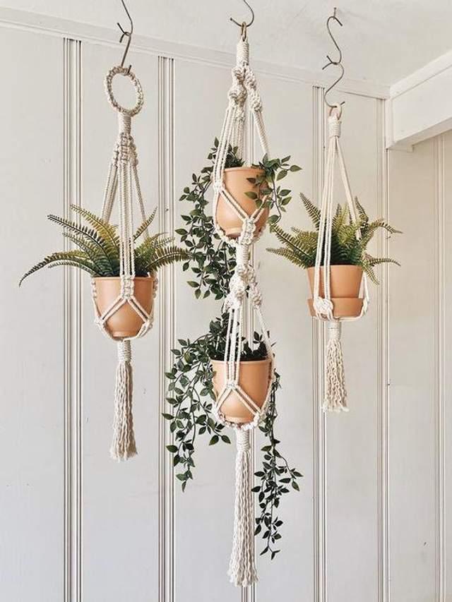 Хотіли б такий сад удома? / Фото Pinterest