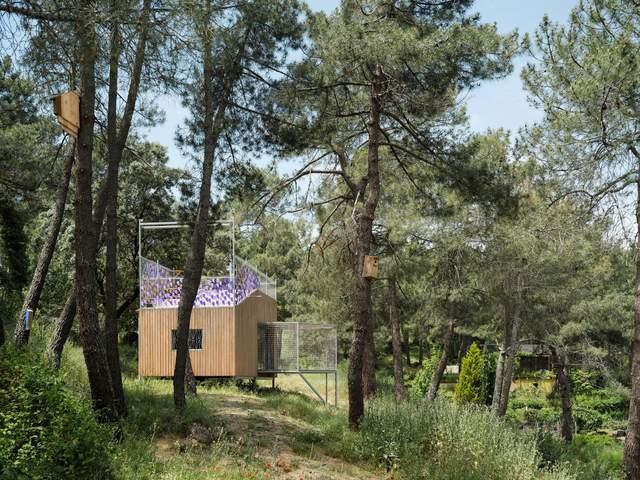 Будинок чинить мінімальний вплив на природу довкола