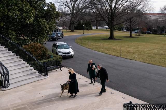 Собаки переїжджають в Білий дім разом із родиною новообраного президента