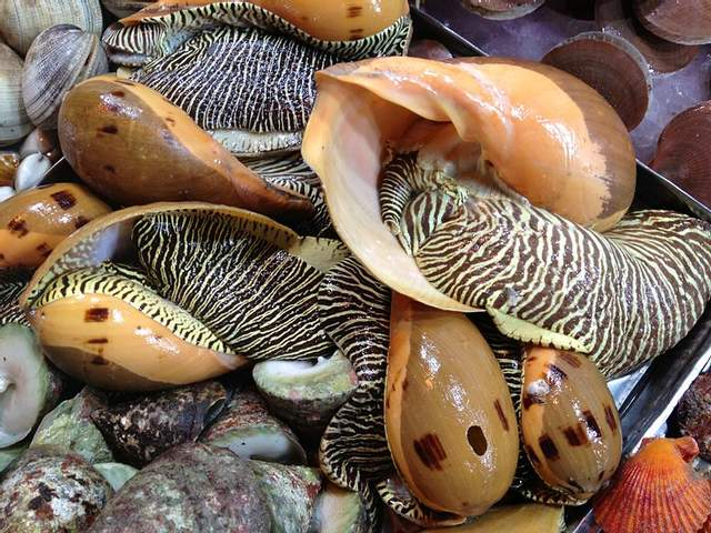 Бідний рибалка з Таїланду знайшов дорогоцінну перлину рідкісного відтінку: яка її вартість