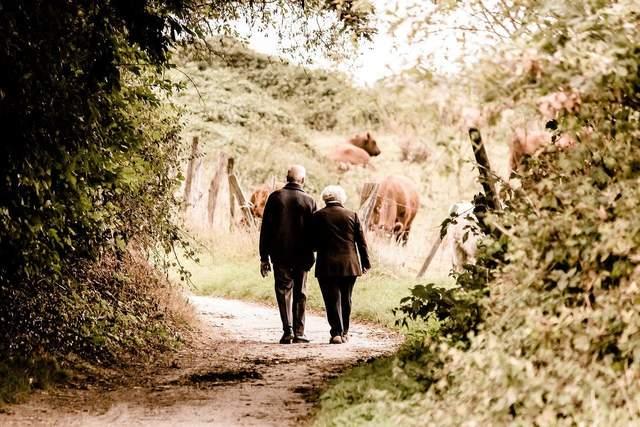50 років разом – це просто неймовірно прекрасно / Фото Pixabay