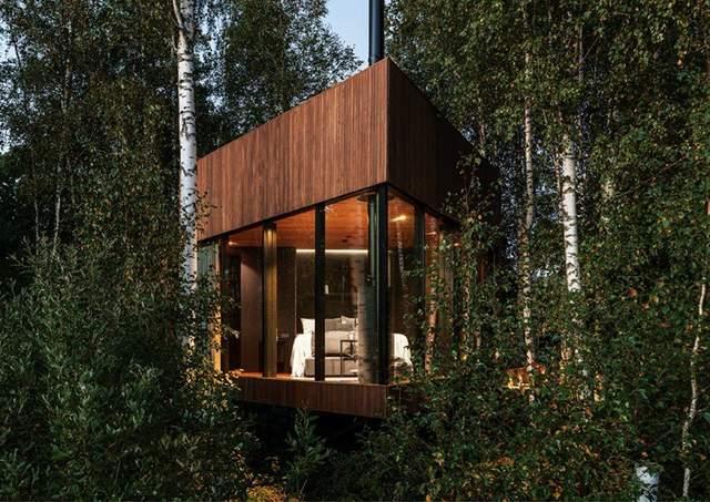 Дім у дрімучому лісі / Фото Designboom