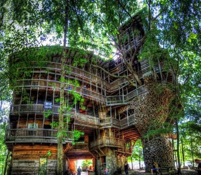Важко уявити, що це будиночок на дереві