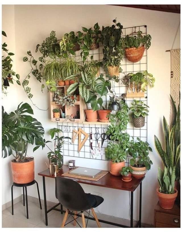 Зелень як прикраса / Фото Pinterest