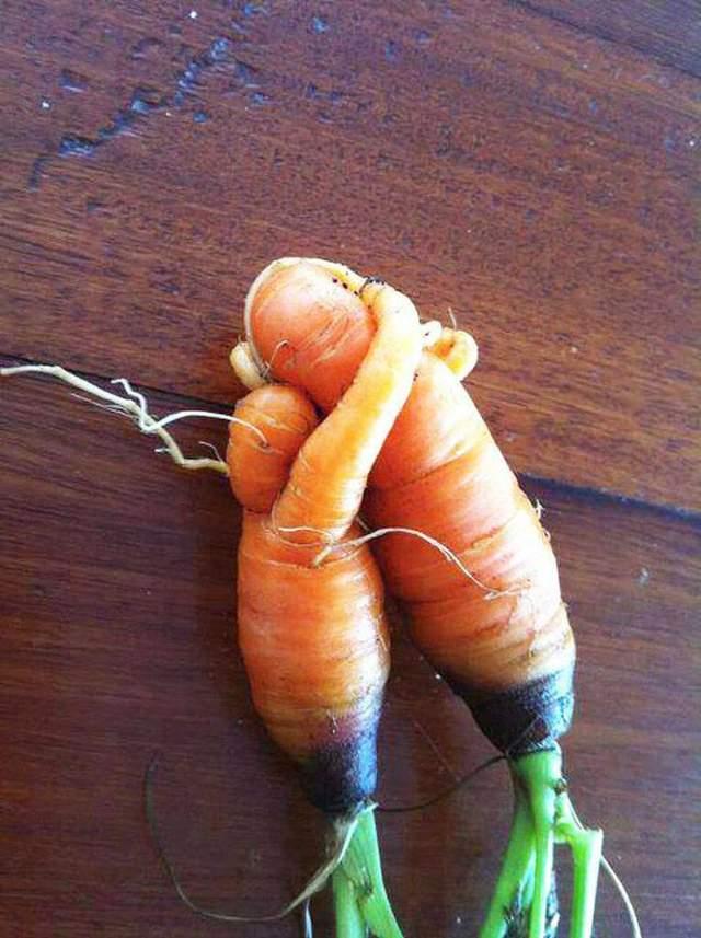 Морквяна любов