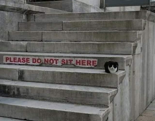 Будь ласка, не сідайте тут
