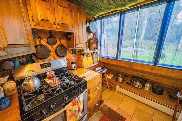 Американець продав пеервернутий дім за 195 тисяч доларів