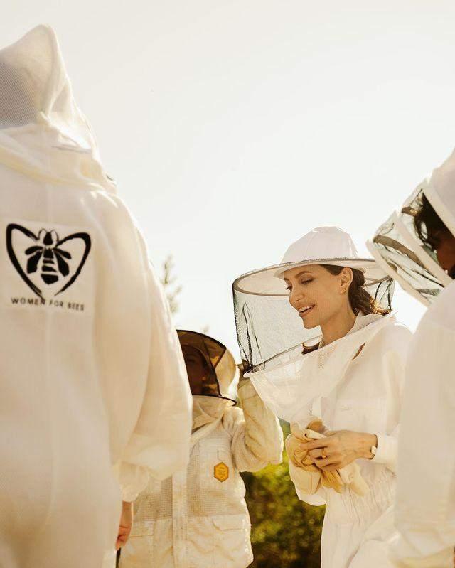 Анджеліна Бджолі підтримує бджільництво
