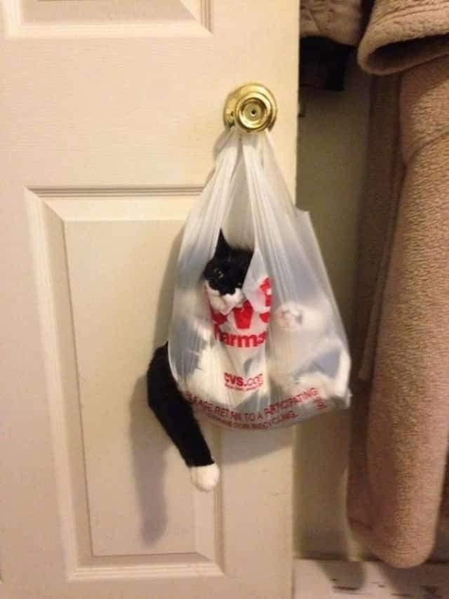 А що, цей пакет висів тут не для мене?