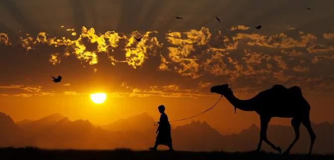 Вчені: Африка та Близький Схід скоро будуть непридатними для життя