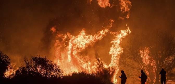 Кількість загиблих внаслідок лісових пожеж у Каліфорнії досягла 42 людей